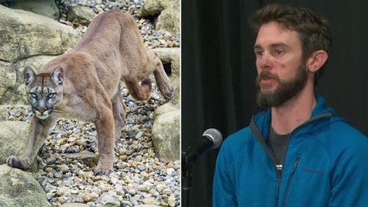 'Pure adrenaline': Jogger describes killing mountain lion with his bare hands
