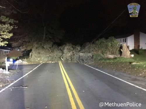 Thousands without power after gusty winds down trees, power lines