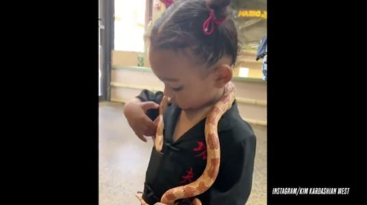 Kim Kardashian Shares Video of 'Brave Girl' Chicago West Playing With a Snake