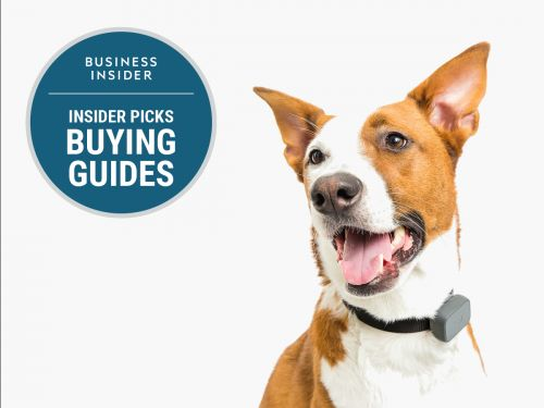 The best pet trackers you can buy