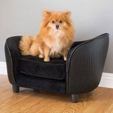 10 Hilarious Pet Beds That Will Show Who's the Boss in Your House