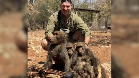 Top wildlife official resigns after posing on hunt with dead baboons & giraffe