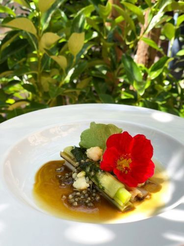 Grilled Leeks with Parsley Puree by Chef Jonas Mikkelsen