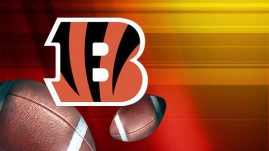 Bengals running back charged with misdemeanor battery