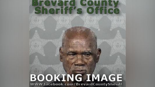 88-year-old Palm Bay man arrested after setting raccoon on fire, police say