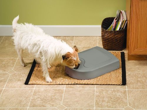 This affordable automatic pet feeder handles portion control for you - so your pet doesn't overeat