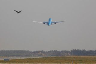 Xiamen Airlines plans to lease 10 Airbus aircraft