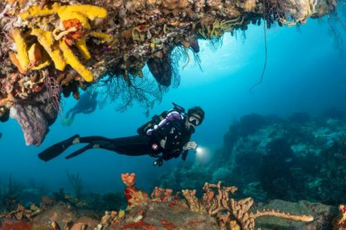 Martinique, The French Caribbean Diving Destination