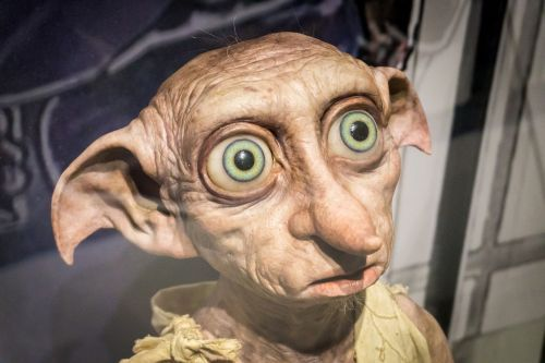 J.K. Rowling is sorry she killed off Dobby