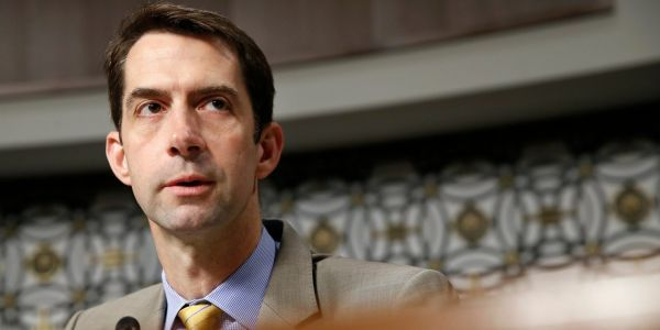 Sen. Tom Cotton thanks New York Times for ignoring 'woke mob in their own newsroom' after black reporters raised safety concerns