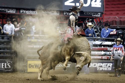 Professional bull rider dies after being stomped during competition