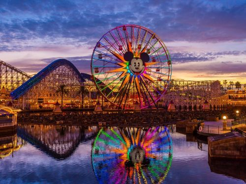 10 ways that adults can have their own magical experience at Disneyland