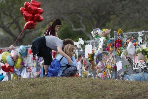 In the wake of Parkland, Trump is meeting with leaders from the video game industry to discuss gun violence - but don't expect anything to come of it