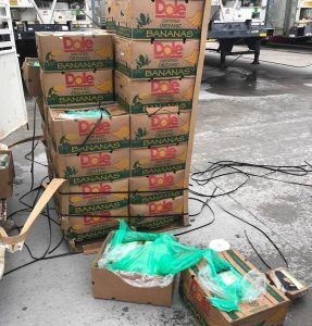 $18 million in cocaine shows up amid bananas given to Texas prison