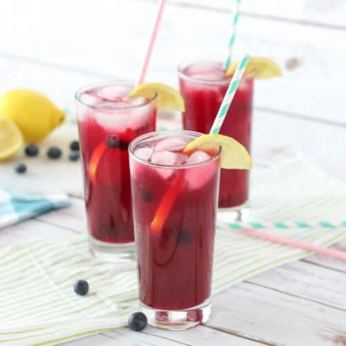 Fizzy Blueberry Lemonade Sugar-Free