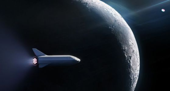 SpaceX Reboots Plan to Send Tourists Around the Moon-and It's About to Name the First Passenger