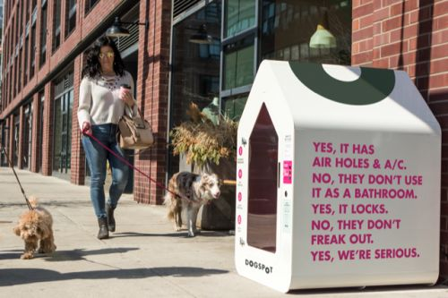 Startup aims to help pets beat the heat as owners run errands