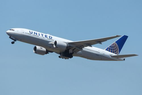 United halts transports of pets not in plane cabin