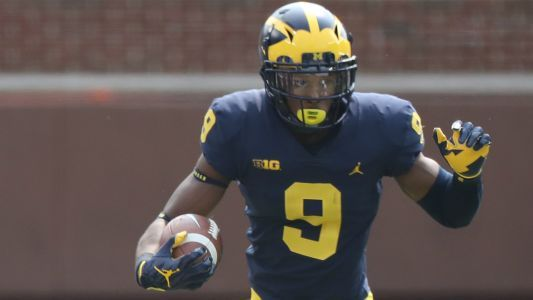Michigan football fans upset refs didn't give Donovan Peoples-Jones a TD