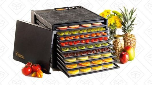 Make Your Own Jerky With This Discounted Food Dehydrator