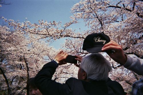 Cherry LA Documents Their Tokyo Trip With a Series of Disposable Camera Shots