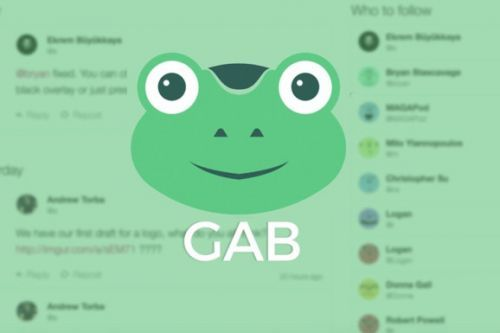 Right-wing social network Gab.com goes offline after Pittsburgh synagogue shooting
