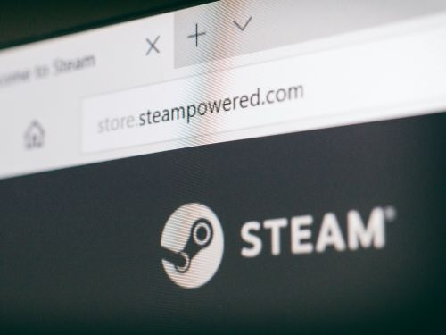 You can play many Steam games offline - here's how to turn on and use offline mode