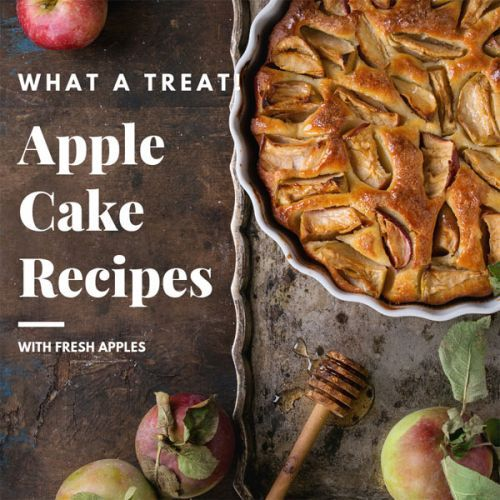 Apple Cake Recipes with Fresh Apples
