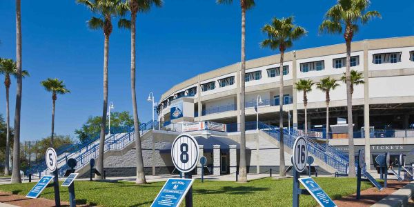 Batter Up: Get in Gear and Handle Spring Training in Tampa Like a Pro