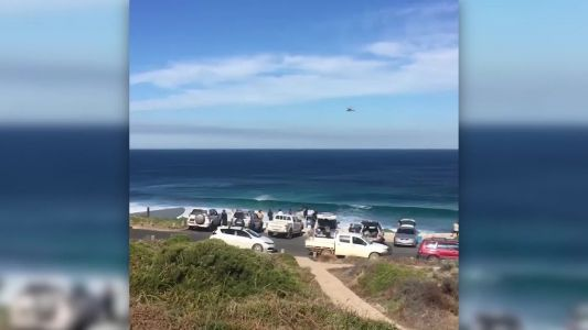 Shark mauls surfer off southwest Australia