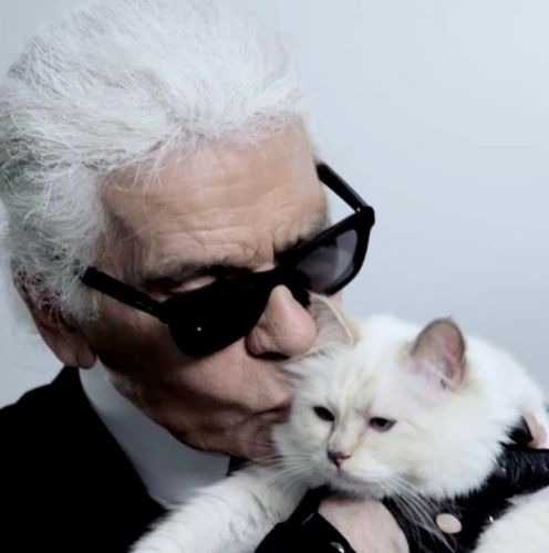 Karl Lagerfeld's cat Choupette is set to inherit millions from his fortune