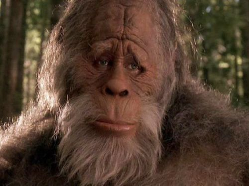A woman is suing California for not recognizing Bigfoot as a species