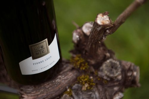 Favorite Oregon Pinot Noir Bottles from Jackson Family Wines