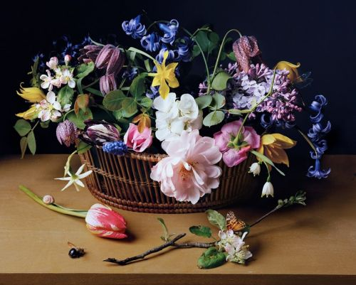 Trompe l'Oeil Photographs Recreating Floral Still Life Paintings