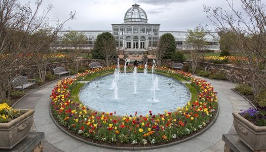 Nine Itineraries for Experiencing Spring in Virginia