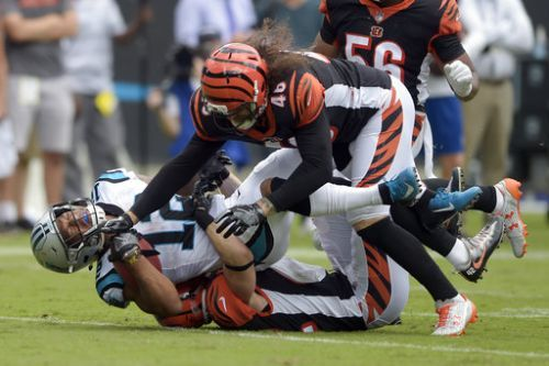 Carolina Panthers win game 31-21 against Bengals