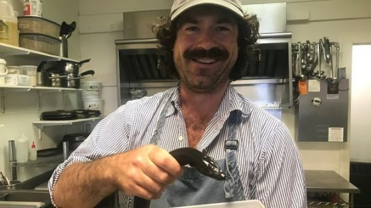 Will Americans Embrace A Zeal For Eel? This Maine Entrepreneur Hopes So