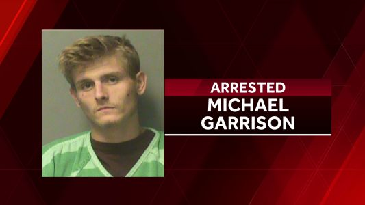 Des Moines man arrested after aiming gun toward police