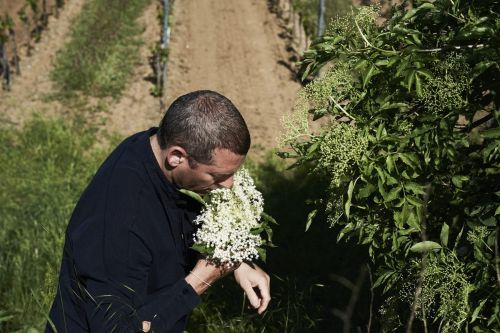 Foraging with Alain Weissgerber of Taubenkobel in Austria