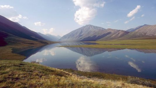 Senate Republicans Block Measure To Protect Arctic Wildlife Refuge From Oil Drilling