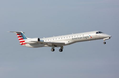 An American Airlines regional jet struck and killed a deer upon takeoff