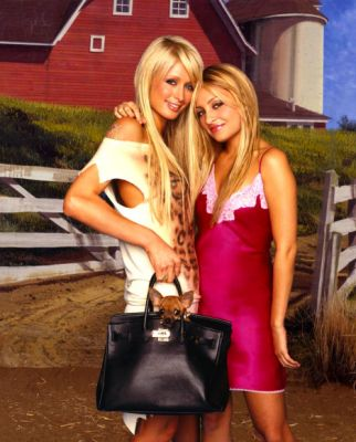 Paris Hilton is making a new reality TV show
