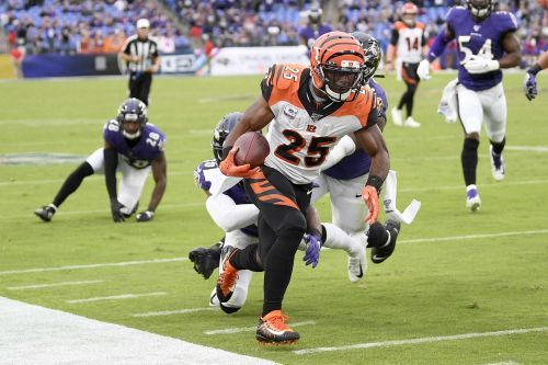 Cincinnati Bengals are one of only 2 teams in the NFL without a win this season