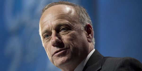 Twitter users are ripping into Iowa congressman Steve King for tweeting that 'diversity is not an American strength'