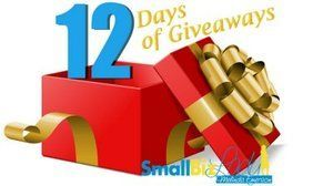 Great way to get extra gifts for your small business this holiday