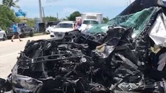 Crash left firefighter and family injured due to iguana crossing road