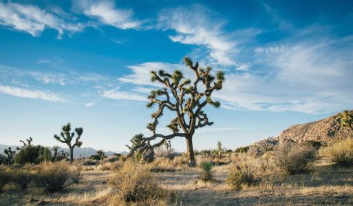 A 7-Day Southern California Road Trip Itinerary