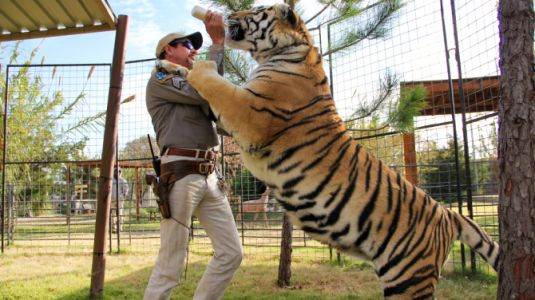 A New 'Tiger King' Episode Will Reveal the Truth About Two Infamous Exotic Cat Owners