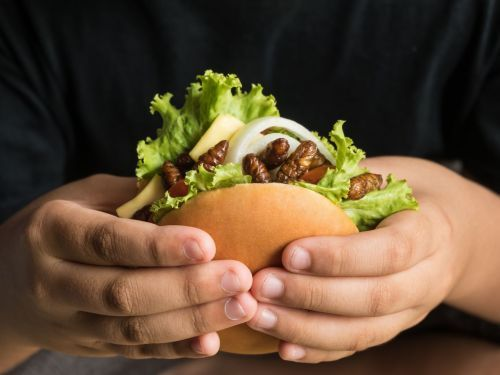 Investors Are Eyeing Insect Protein as the Next Fake Meat