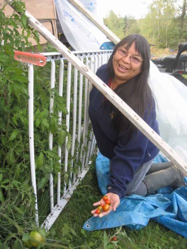 Opinion | Indigenous Gardens Boost Food Sovereignty in Canada